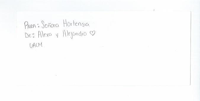 Hortensia-01